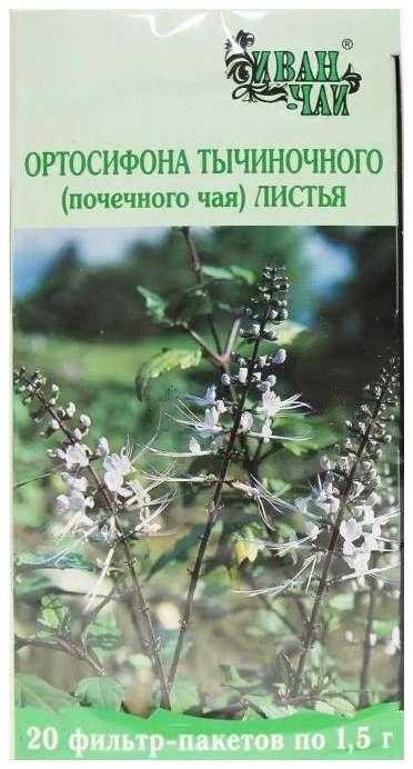 Ортосифон листья 20 шт., фото №1