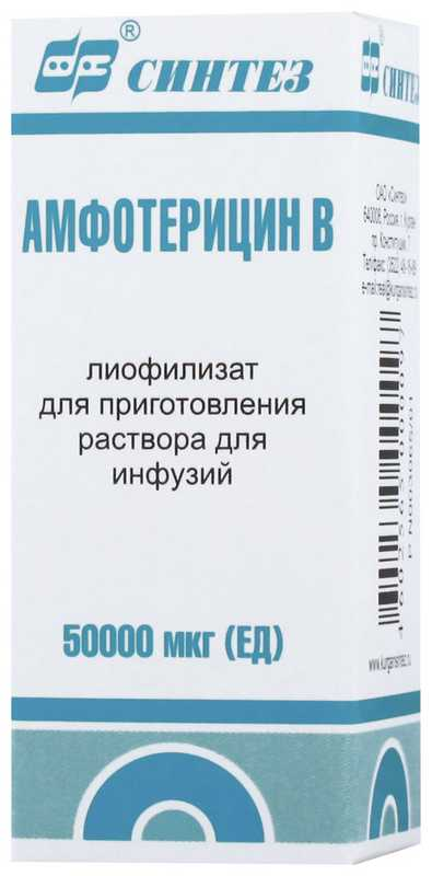 Амфотерицин b 50000мкг 1 шт. лиофилизат для приготовления раствора для инфузий, фото №1