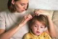 Головная боль родителей: причины, развитие, лечение педикулеза у детей