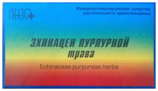 Эхинацея трава 20 шт. фильтр-пакет, фото №1