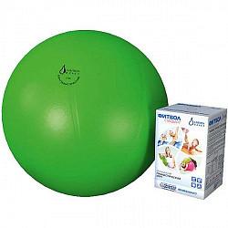 Альпина пласт стандарт фитбол (мяч медицинский гимнастический пвх) d55см зеленый