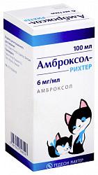 Амброксол-рихтер 6мг/мл 100мл сироп гедеон рихтер